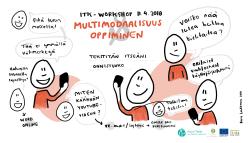 Raisa Laukkasen livemuistiinpanot Poluttamon ITK-workshopista 11.4.2018